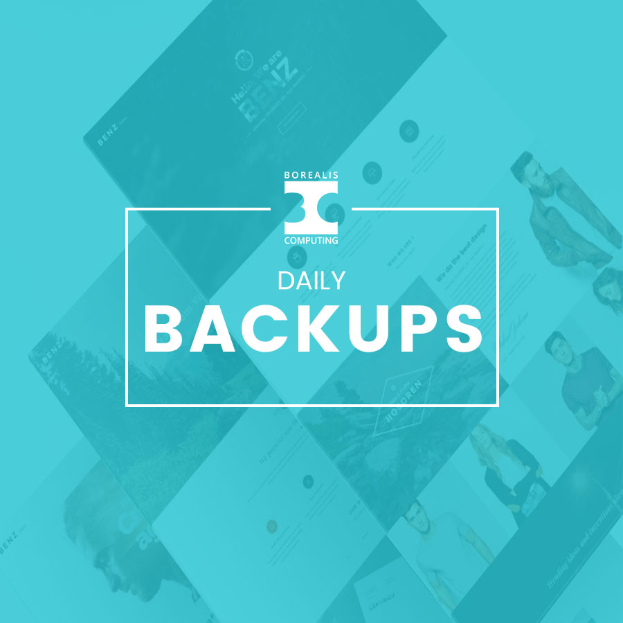 Daily Website Backups Product Thumbnail